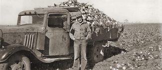 A look at Windsor Colo.'s sugar beet heritage