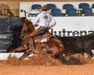 Breeders Connection 2019: Koch Cowhorses make dreams come true one ride at a time