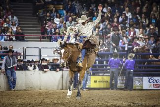 2019 National Western Stock Show celebrates over 700,000 attendees