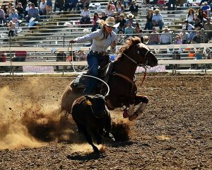 Daddy Daughter Dance: Cheyenne Frontier Days adds Breakaway to event lineup, and more changes