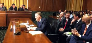 Thune to Lighthizer: China trade conflict ruining cattle hide market