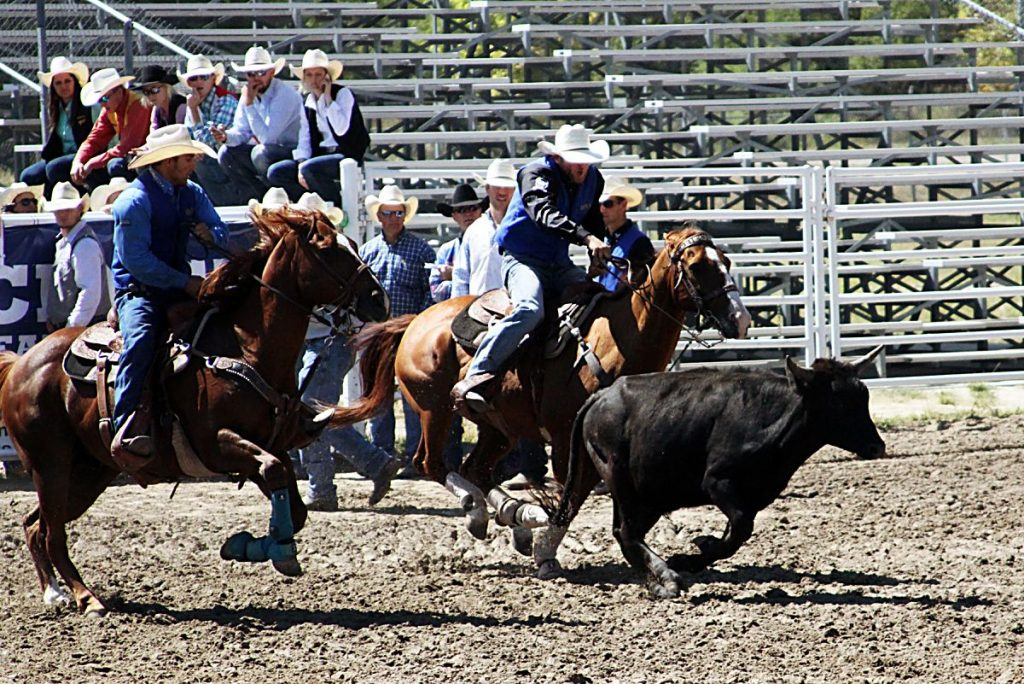 MPCC cowboy finishes third in the nation