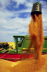 Helping wheat and corn producers target their fertilizer needs